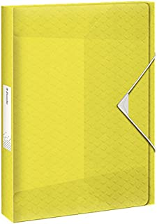 Esselte Colour'Ice 储物盒,A4 40 毫米背宽,PP,黄色,6262