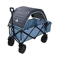 10T Roof Trolley 带屋顶可折叠手推车带冷却袋和后备箱沙滩车