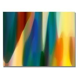 Trademark Fine Art Color Fury IV by Amy Vangsgard Canvas Wall Art 24 到 32 英寸