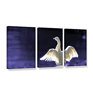 """ArtWall Lindsey Janich 'Goosewings' 3 Piece Gallery-Wrapped Canvas Artwork, 36 by 72"""""""