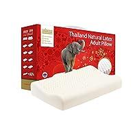 TAIPATEX  天然泰国乳胶透气养护枕 乳胶枕 单只 34cmx60cmx10cm  [新老包装交替 随机发货]
