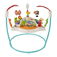 Fisher-Price Jumperoo,Color Climbers [亞馬遜*] 藍色 均碼