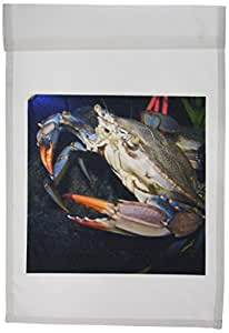 JACKIE Popp 天然 N 野生动物–螃蟹–旗帜 12 x 18 inch Garden Flag