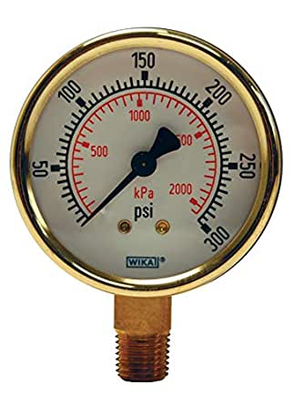 Dixon GBR600 黄铜干规格,带 6.35 厘米表面,0.64 厘米底部安装,双 psi,0-600 psi,6.35 厘米