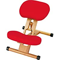 宫武制作所 专业椅子 红色 幅49.5x奥行61-68x高さ43-64cm CH-88W(RD)
