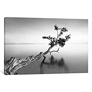 iCanvasART MOL7 Water Tree IX by Moises Levy Comics Canvas Print, 26 by 18-Inch, 0.75-Inch Deep