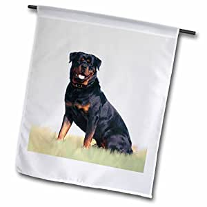 3dRose fl_4367_2 Rottweiler 花园旗,45.72 x 68.58cm
