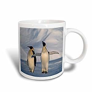 danita delimont–企鹅–Antarctica ,帝王企鹅站立冬季–马克杯 白色 15盎司