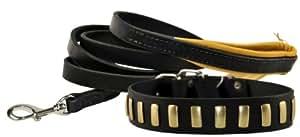 Dean & Tyler 30 x 1-1/2 英寸镀层完美项圈搭配柔软触感 6 英尺皮带,不锈钢扣钩 黑色 XL
