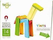 Tegu 14 件磁性木制積木套裝 Tints
