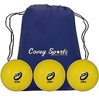 ProNine 加重棒球垒球,用于击球练习 - (多件装)- 12 盎司和 16 盎司(约 473.2 毫升) 重型训练球,随附 Covey 运动装备包