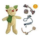 高级狗绳玩具套装适用于中小型犬,狗狗咀嚼玩具互动狗出牙玩具棉绳结玩具,5 件装