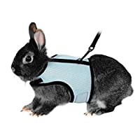 POPETPOP 柔软的宠物兔子狗背带和皮带 - 可调节小型宠物户外散步跑步牵引带 - 小动物配件 - 尺码 XL(天蓝色)