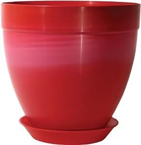 Rush Creek Designs PIM0866027410 枝形花盆,紫红色