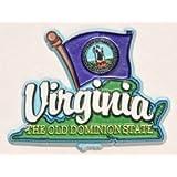 弗吉尼亚州地图旗冰箱收藏品纪念品磁贴