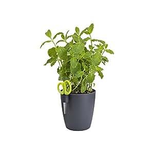 Elho planter