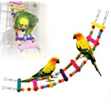 JungleAquashrimp 鸟木制彩虹梯桥 适合平衡和挥杆 天然木 适合鹦鹉非洲灰鹦鹉 Conures 鸡尾鹦鹉 Lovebirds 鸟笼配件