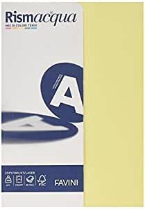 FAVINI A69 X 524 rismacquaa4 卡片纸,200 g/m2,5 种颜色A69X524
