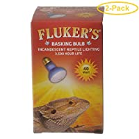 Fluker's 白炽灯泡 40 瓦 - 2 只装