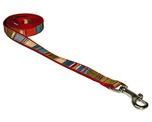 Sassy Dog Wear 4-Feet Red/Multi Stripe Dog Leash, X-Small