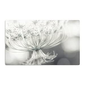"KESS InHouse Debbra Obertanec""Queen""白色花朵艺术铝磁铁,5.08 厘米 x 7.62 厘米,多色"
