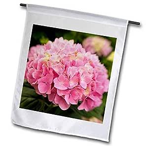 3dRose fl_89371_1 乔治亚州,萨凡纳花园中的粉色深兰格花朵 US11 JWl0174 花园旗,30.48 x 45.72 厘米