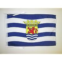 ZEELAND FLAG 18 英寸 x 12 英寸电线 - ZEELAND 小条 30 x 45cm - 横幅 18x12 英寸 - AZ FLAG