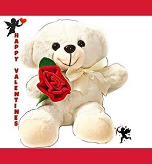 Niuniu 爸爸情人节小熊礼物 浪漫小熊 毛绒动物 毛绒玩具 *好的情人节小熊 10in 白色
