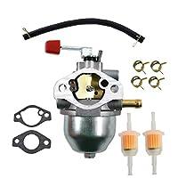 WFLNHB 化油器 0C1535ASRV 带垫圈燃油管 适用于 Generac 4000EXL GN190 GN220 7.8PS