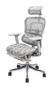 ergonor 联友椅业 保友金豪 电脑椅透气网布人体工学电脑椅家用老板椅(银色) 椅子+固定式躺舒宝 定制产品(亚马逊自营商品, 由供应商配送)