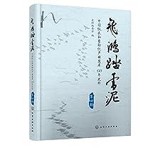 飞鸿踏雪泥:中国仪表和自动化产业发展60年史料.第4辑
