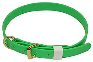 J&J 狗用品两栖狗项圈宽 2.54 cm 可调节范围为 35.56 cm 至 60.96 cm 霓虹绿 可调节