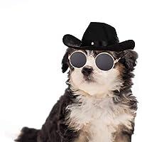 WODISON 2 件酷宠物狗猫牛仔服装帽子和复古时尚太阳镜套装