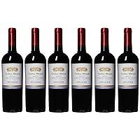 【亚马逊直采】Vina Errazuriz 伊拉苏酒庄酒窖混酿梅洛赤霞珠干红葡萄酒750ml*6(亚马逊进口直采红酒,智利品牌)自营精选