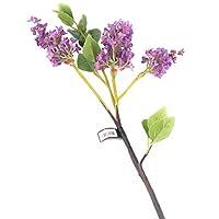 花朵优雅仿真 76 厘米单杆 Dozen 紫色 12F084PUL