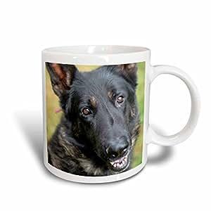 3dRose mug_207507_1 German Shepherd Ceramic Mug, 11 oz, White