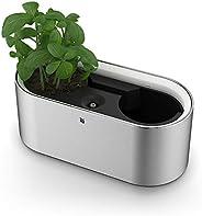 WMF AMBIENT Kräuter@家用电动*花园,用于2个*盆,配有自灌溉系统,指尖轻触(易触摸),可控制 LED 灯