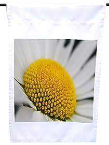 Rikki Knight 白色黄色雏菊宏特写房子或花园旗帜,30.48 x 45.72 cm 旗帜尺寸带 27.94 x 27.94 cm 图像