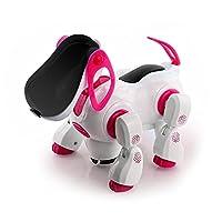 nmit 儿童 i-ROBOT 小狗,闪烁浅 & sound 唱歌,跳舞,转向, bump 'n' GO 手表视频
