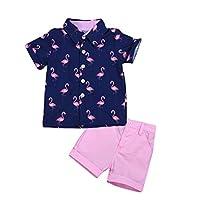幼童男男嬰紳士套裝火烈鳥短袖系扣上衣襯衫 + 純色短褲褲子套裝 2 件套