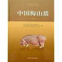 中国梅山猪