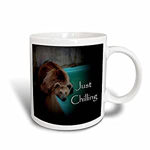 3dRose Grizzly Bear by pool Magic Transforming Mug, 11-Ounce