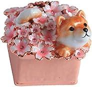 PIEARTH 首饰盒装和樱花 EX510–9