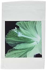 florene Flowers–芙蓉 ENVY–旗帜 12 x 18 inch Garden Flag