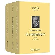 胡塞尔文集: 共主观性的现象学(全三卷)