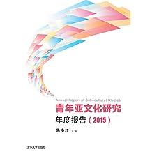 青年亚文化研究年度报告(2015)