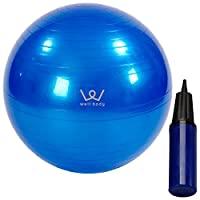 ALINCO 平衡球 65cm 带气泵 EXG025A 蓝色