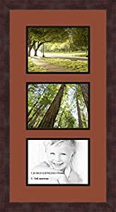Art to Frames 双-多衬垫-873-766/89-FRBW26061 拼贴框架照片垫双衬垫带 3 个 - 6x8 开口和Espresso 框架