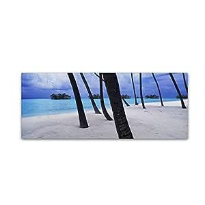 "Trademark Fine Art Beach Palms-Maldives Wall Decor by David Evans, 6 x 19"""