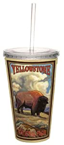 TreeFree Greetings 80462 Yellowstone Buffalo by Paul A. Lanquist Artful Traveler Double-Walled Acrylic Cool Cup with Straw, 16-Ounce, Multicolored